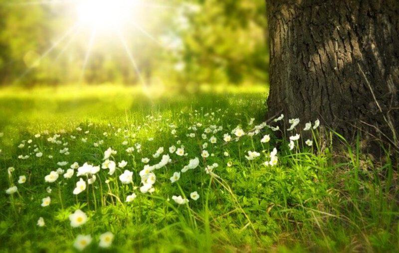 Wiosna, czas na wakacje!